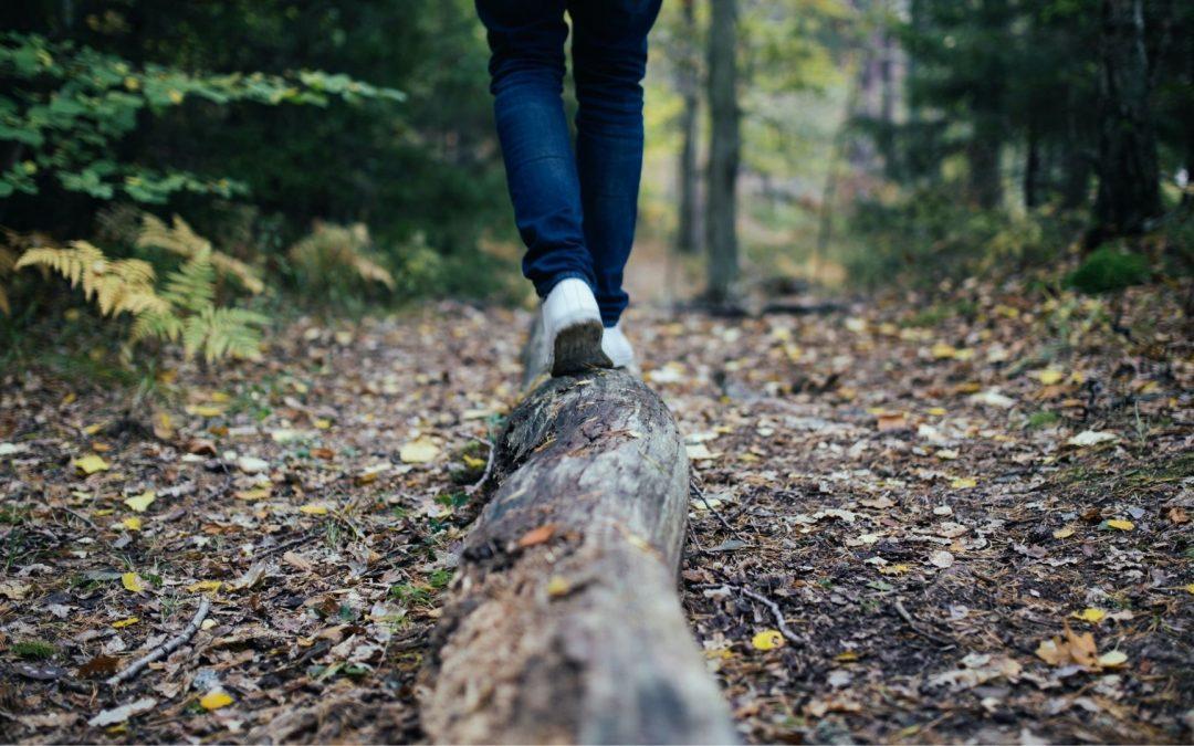 6 randonnées canadiennes à faire absolument