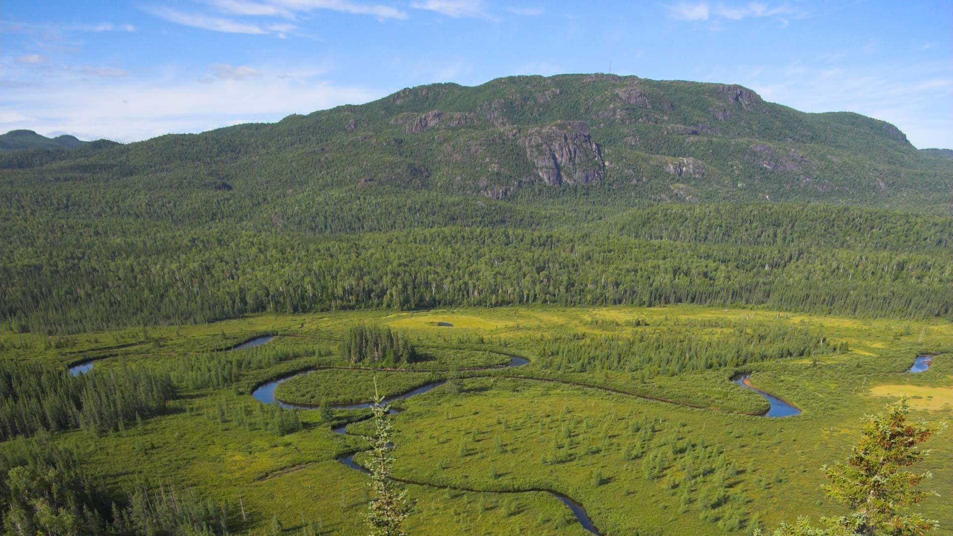 Une bouffée d'air frais au Saguenay—Lac-Saint-Jean